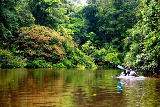Tortuguero Expeditions